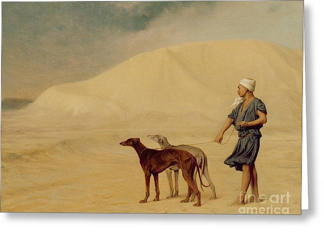 Hound Hounds Greeting Cards - In the Desert Greeting Card by Jean Leon Gerome