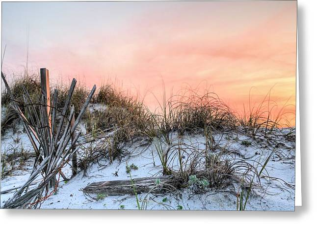 Emerald Coast Greeting Cards - In the Dunes of Pensacola Beach Greeting Card by JC Findley