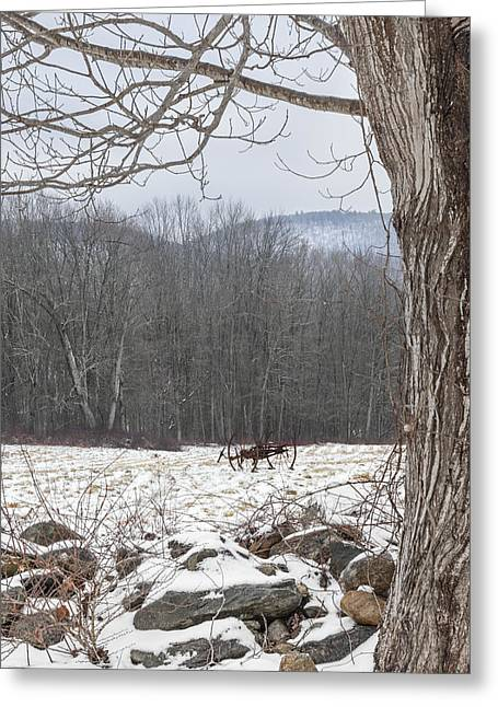 Winter Scenes Rural Scenes Greeting Cards - In the field Greeting Card by Bill  Wakeley