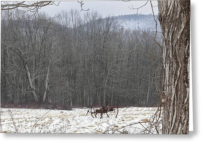In the field Greeting Card by Bill  Wakeley