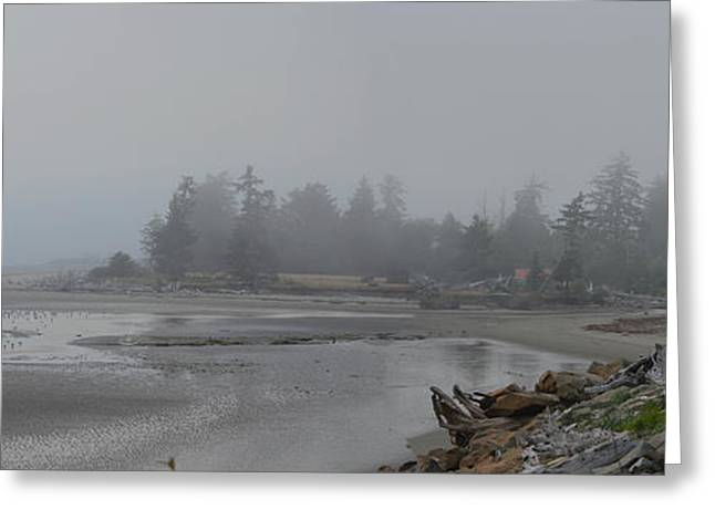 Foggy Beach Greeting Cards - In the Fog Greeting Card by Judy Arbuckle