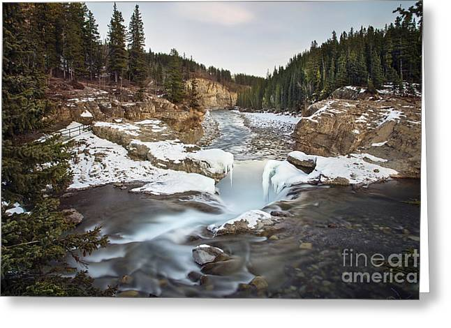 Alberta Water Falls Greeting Cards - In The Frosty Forests Greeting Card by Evelina Kremsdorf
