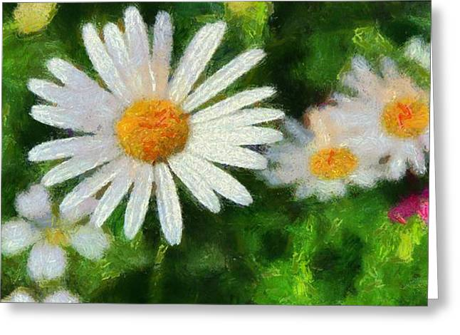 Daisies Mixed Media Greeting Cards - In The Garden Greeting Card by Dan Sproul