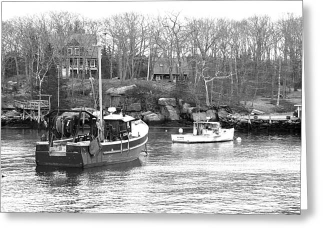 Coastal Maine Greeting Cards - In The Harbor Greeting Card by Becca Brann