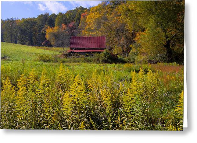 In The Heart Of Autumn Greeting Card by Debra and Dave Vanderlaan
