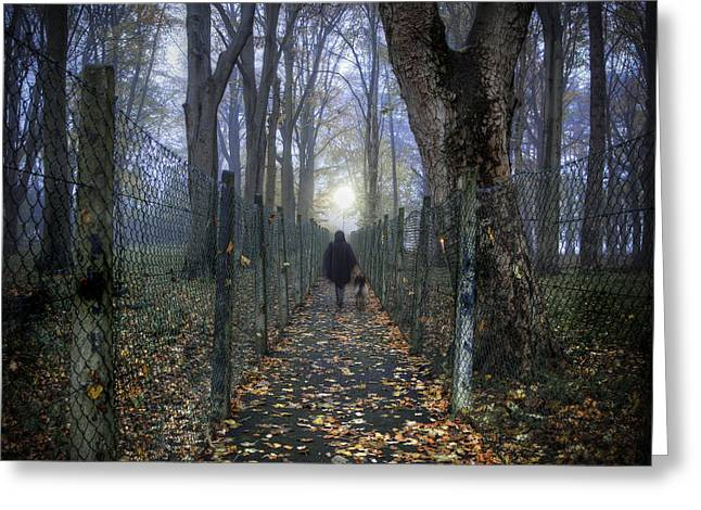 In The Lane Greeting Card by Janet Meehan