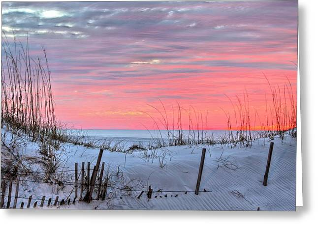 South West Florida Greeting Cards - In the Light of Dawn Greeting Card by JC Findley
