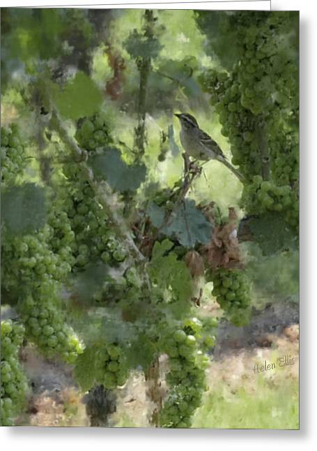Chipping Sparrow Greeting Cards - In the Midst of Plenty Greeting Card by Helen Ellis