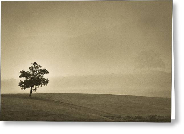 Harding Greeting Cards - In the mist lies hope Greeting Card by Constance Fein Harding