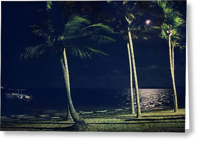 Moonlit Night Greeting Cards - In the Moonlight Greeting Card by Laurie Search