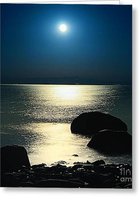 Moonrise Greeting Cards - In The Nights Soul Greeting Card by Leyla Ismet