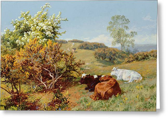 Pastoral Landscape Greeting Cards - In The Nower, Dorking Greeting Card by Charles Collins