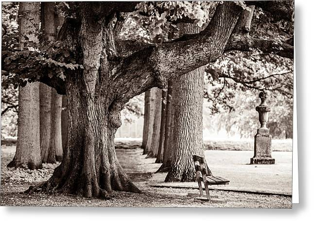Kasteel De Haar Photographs Greeting Cards - In the Old Park at De Haar Castle Greeting Card by Jenny Rainbow