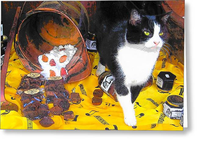 Paris Black Cats Greeting Cards - In the Paris Chocolate Shop Window Greeting Card by Jan Matson