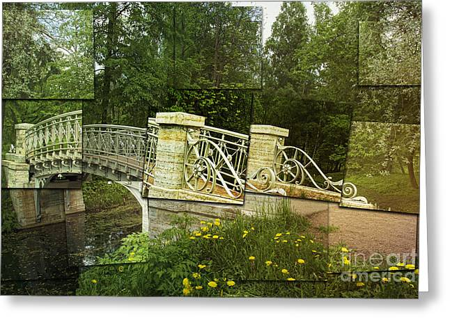 Pond In Park Greeting Cards - In The Park Greeting Card by Elena Nosyreva