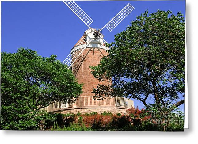 White Smock Greeting Cards - In The Park Greeting Card by Kathleen Struckle