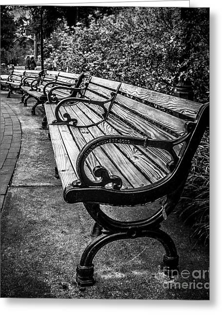 Park Benches Digital Art Greeting Cards - In The Park Greeting Card by Perry Webster