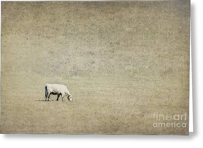 Milk Day Greeting Cards - In the pasture Greeting Card by Elena Nosyreva