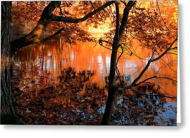 Autumn Art Greeting Cards - In the Pond Greeting Card by Lourry Legarde