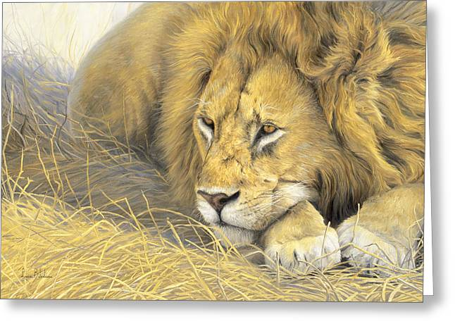 Male Lion Greeting Cards - In The Shade Greeting Card by Lucie Bilodeau