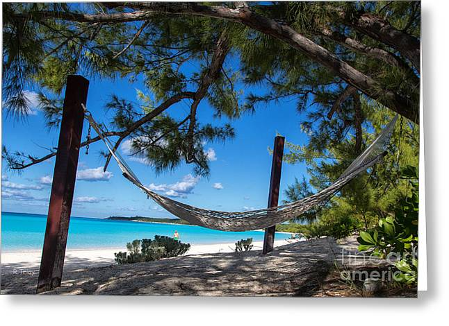 Half Moon Cay Greeting Cards - In The Shade Greeting Card by Rene Triay Photography