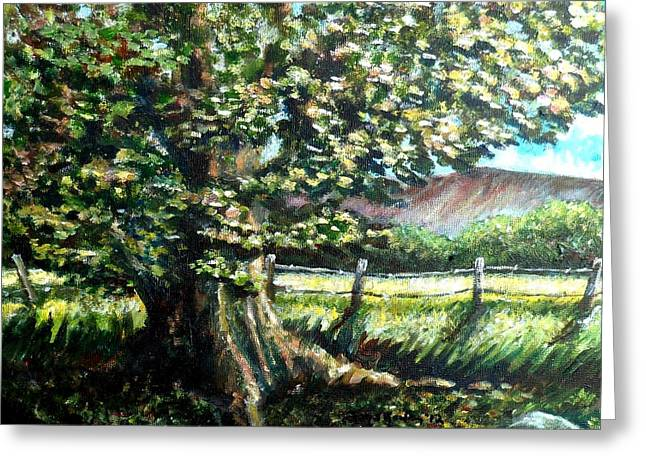 Tree Roots Paintings Greeting Cards - In the Shade Greeting Card by Shana Rowe