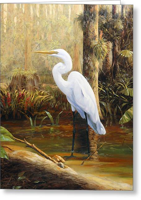 Great Egret Greeting Cards - In the Shallows Greeting Card by Tim Davis