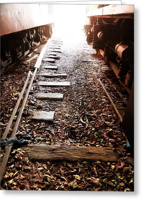 Sidelines Greeting Cards - In the Sidings Greeting Card by Steve Taylor