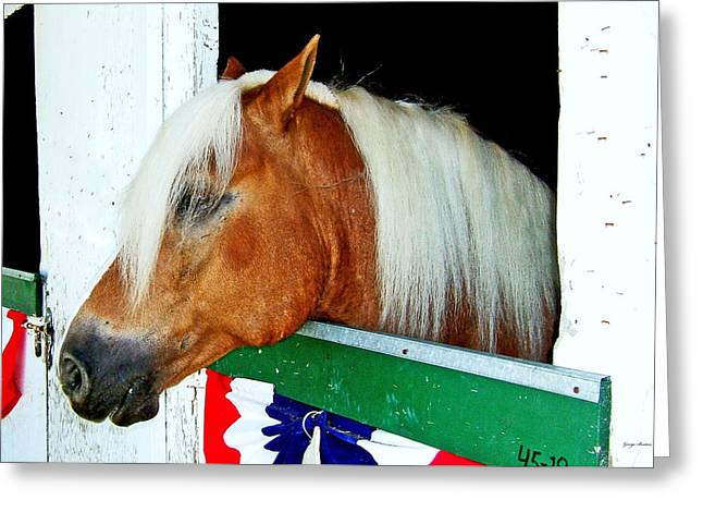 In The Stable 002 Greeting Card by George Bostian