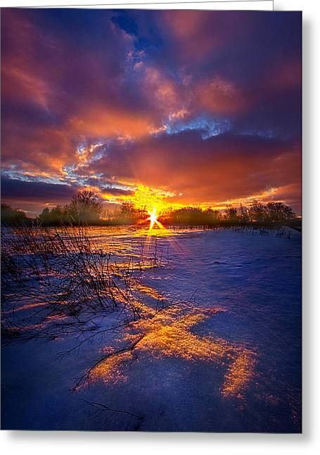Sunrise Greeting Cards - In The Still Of Dawn Greeting Card by Phil Koch