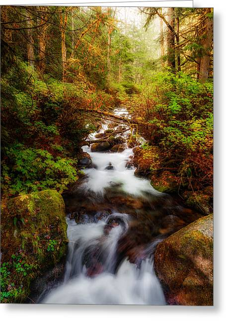 Moss Green Greeting Cards - In the Thick of It Greeting Card by James Heckt