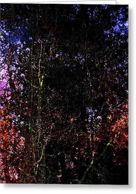 Pamela Cooper Greeting Cards - In the Thicket Greeting Card by Pamela Cooper