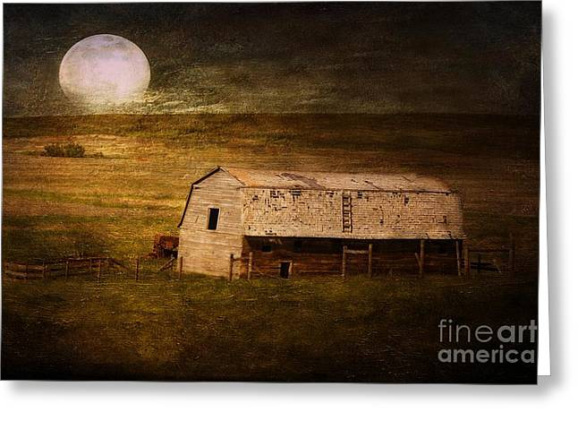 Moonrise Greeting Cards - In the Wee Hours of the Morning Greeting Card by Vickie Emms