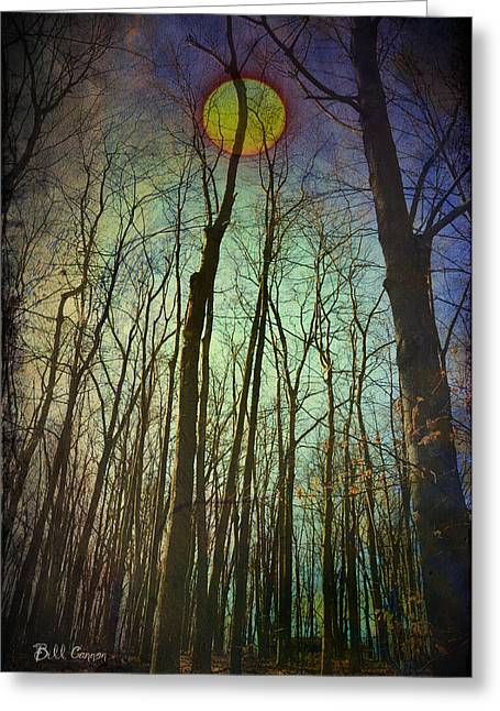 Forest At Night Greeting Cards - In the Woods at Night Greeting Card by Bill Cannon