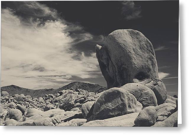 Stones Photographs Greeting Cards - In This Strange Land Greeting Card by Laurie Search