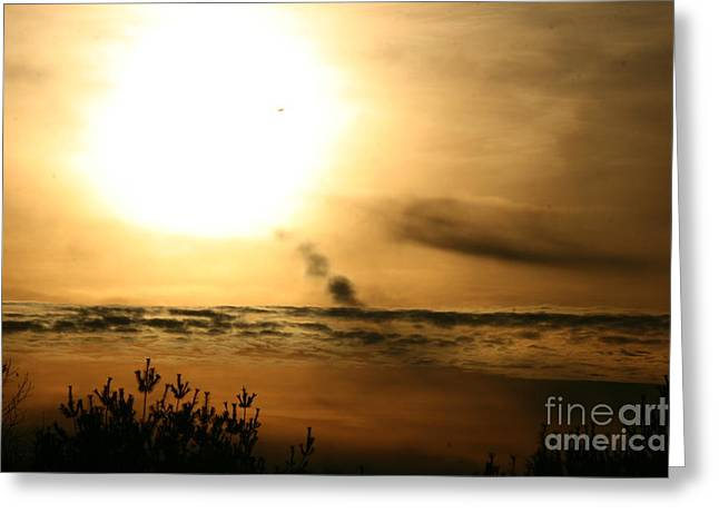 Landscape Photos Greeting Cards - In to the Sun  Greeting Card by Neal  Eslinger