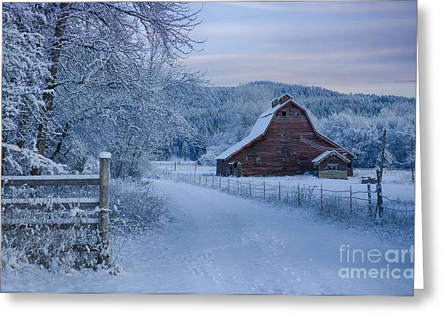 Rural Snow Scenes Greeting Cards - In Winter White Greeting Card by Idaho Scenic Images Linda Lantzy