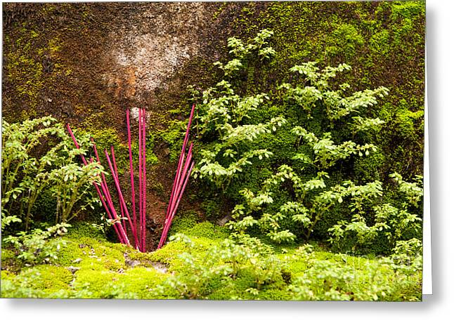 Incense Sticks Greeting Cards - Incense 06 Greeting Card by Rick Piper Photography