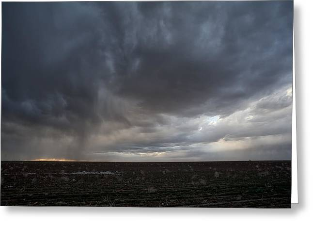 Mancave Photos Greeting Cards - Incoming Storm Over A Cotton Field Greeting Card by Melany Sarafis