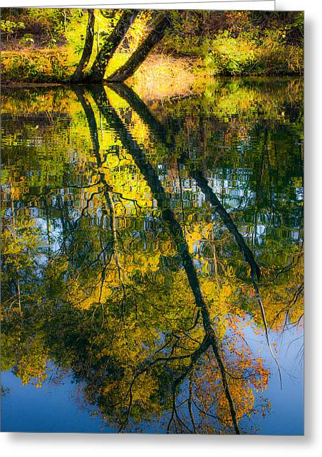 Yellow Leaves Greeting Cards - Incredible Colors Greeting Card by Parker Cunningham