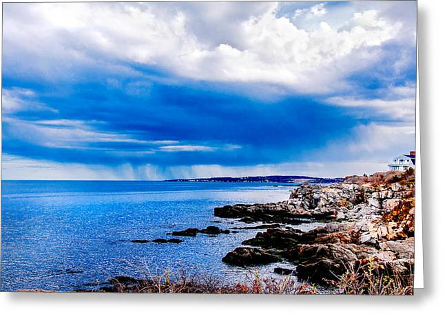 Maine Shore Greeting Cards - Indecision Greeting Card by Greg Fortier