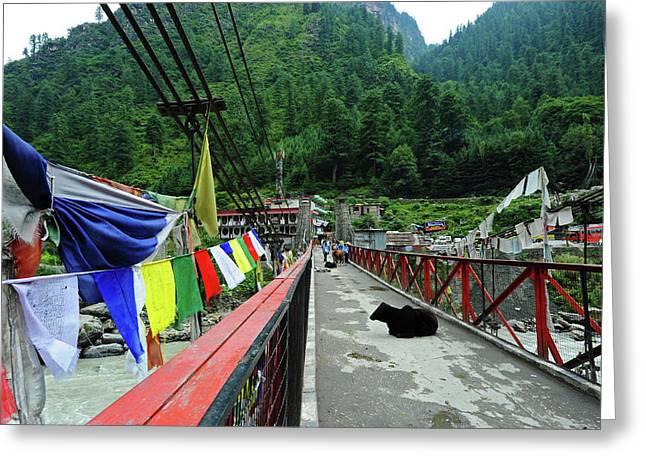 India, Himachal Pradesh, Manikaran Greeting Card by Anthony Asael