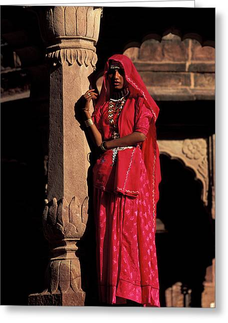 India, Jodpur, Rajasthan, Gardens Greeting Card by Claudia Adams