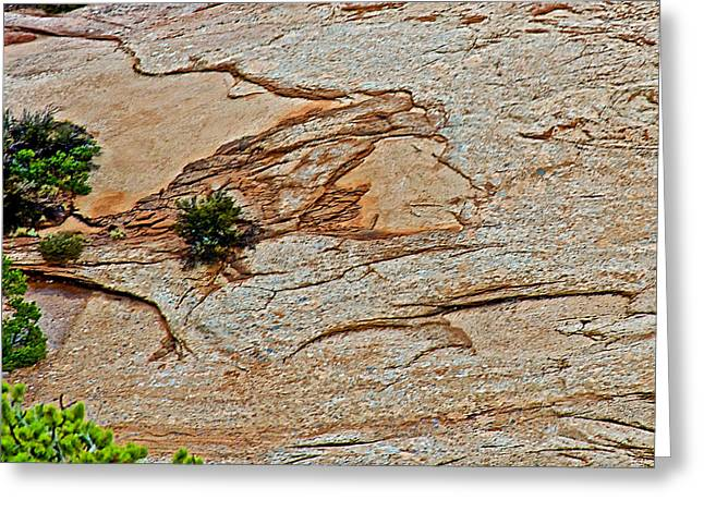 Indian Face In Rock Dome In Navajo National Monument-arizona Greeting Card by Ruth Hager