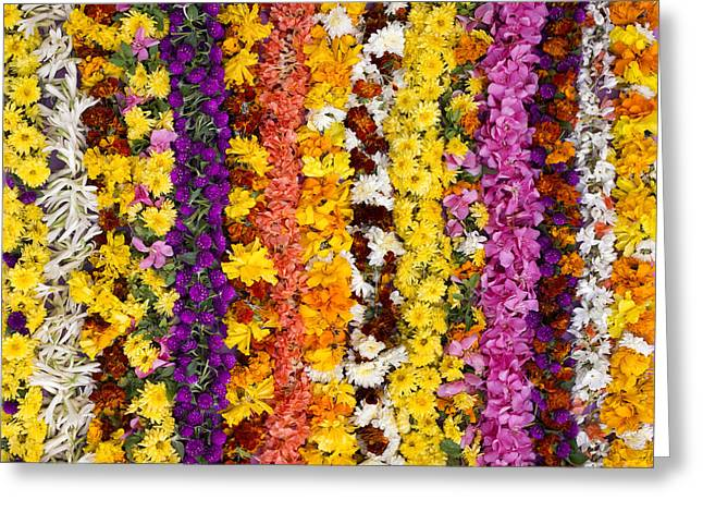 Indian Flower Garlands  Greeting Card by Tim Gainey