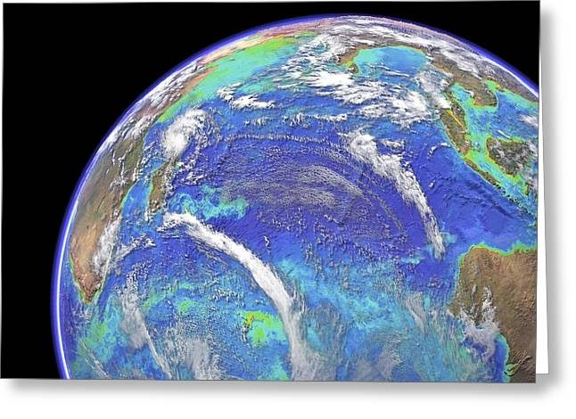 The Plateaus Greeting Cards - Indian Ocean, chlorophyll and bathymetry Greeting Card by Science Photo Library