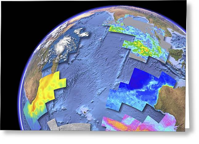 Anomalies Greeting Cards - Indian Ocean, satellite imaging data Greeting Card by Science Photo Library