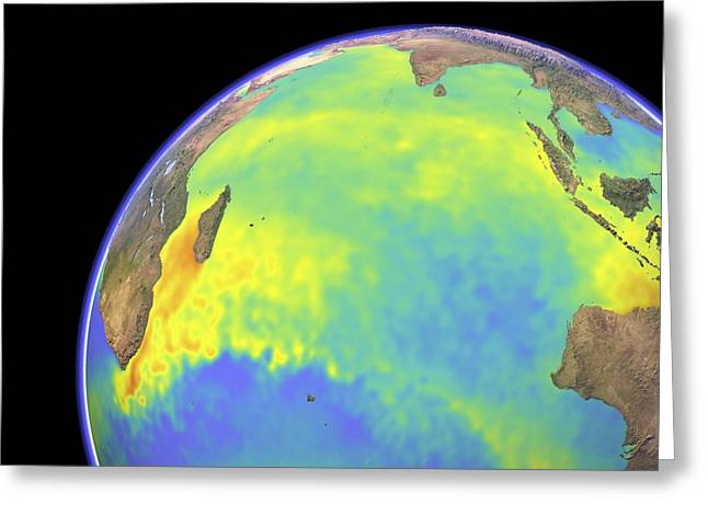 Anomalies Greeting Cards - Indian Ocean, surface temperatures Greeting Card by Science Photo Library