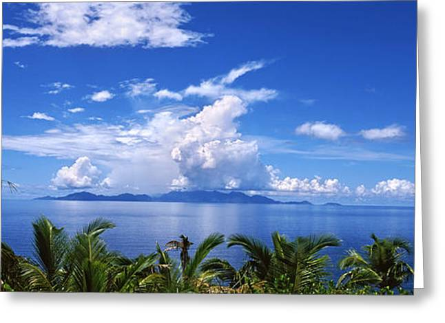 Panoramic Ocean Greeting Cards - Indian Ocean With Palm Trees Towards Greeting Card by Panoramic Images