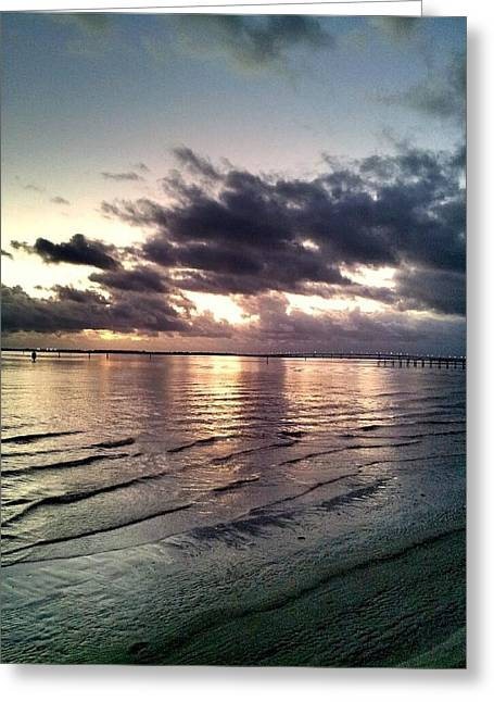 Saltlife Greeting Cards - Indian River Sunrise Greeting Card by Lisa Kilbreth